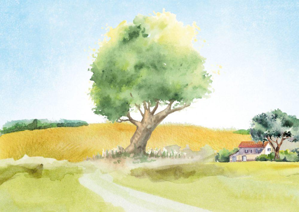 Ar.Bore Bio : La giusta direzione della natura